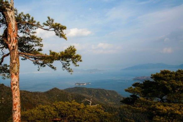 island view2