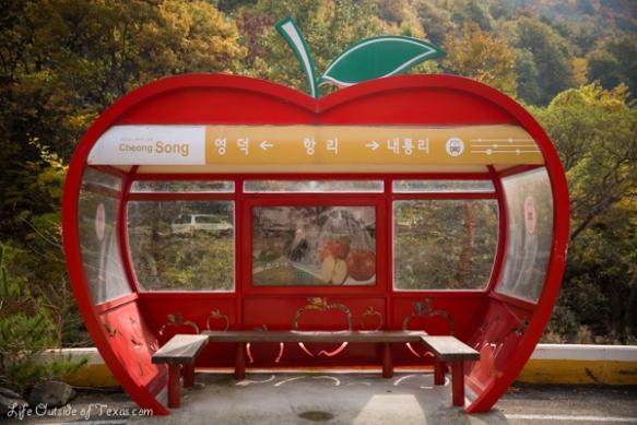 Jusanji apples