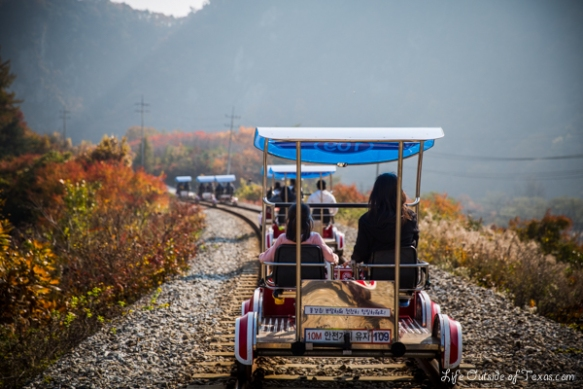 The Ultimate Guide to Rail Biking in Korea